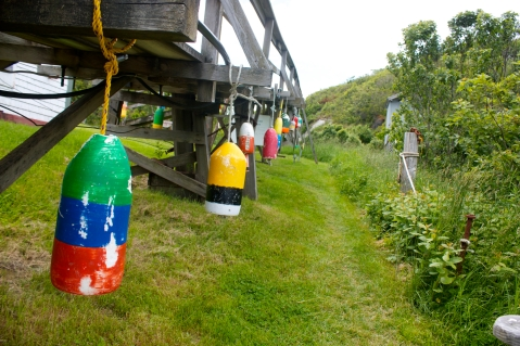 Buoys lining the path towards the lighthouse at the top of Seguin Island.